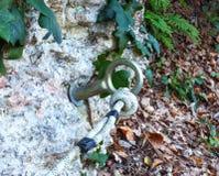 Anillo de la fijación del alpinismo con una cuerda Foto de archivo libre de regalías