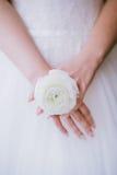 Anillo de la flor de la novia que lleva, primer, Fotos de archivo
