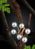 Anillo de la joyería con la perla en la ramita, fondo oscuro Fotografía de archivo