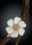 Anillo de la joyería con nácar como flor en la ramita, fondo oscuro Fotos de archivo