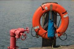 Anillo de vida en un embarcadero Imagen de archivo libre de regalías