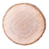 Anillo del fondo del corte de madera Imagen de archivo libre de regalías
