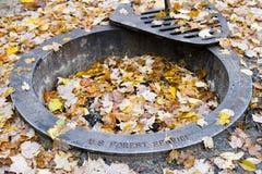Anillo del fuego de bosque del Estado de Manistee Imagen de archivo libre de regalías