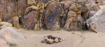 Anillo del fuego del sitio para acampar Imagen de archivo libre de regalías