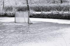 Anillo del hielo y meta del hockey Imagenes de archivo