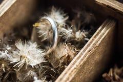 Anillo en la flor en la caja Imagen de archivo