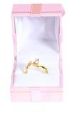 Anillo en rectángulo Foto de archivo libre de regalías