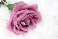 Anillo en Rose Fotografía de archivo libre de regalías