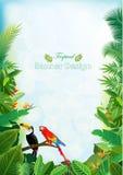 Anillo tropical de la isla de plantas hermosas ilustración del vector