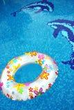 Anillo y delfín en piscina Imágenes de archivo libres de regalías