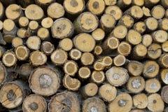Anillos apilados madera de construcción Foto de archivo