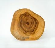 Anillos de árbol de madera seccionados transversalmente del grano fotos de archivo libres de regalías