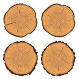 Anillos de árbol y tronco de árbol del corte de la sierra Fotos de archivo libres de regalías