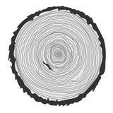 Anillos de árbol y tronco de árbol del corte de la sierra Ilustración del vector Imagen de archivo libre de regalías