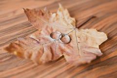 Anillos de bodas fotografía de archivo libre de regalías