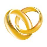 Anillos de bodas de las vendas de boda Imagen de archivo libre de regalías