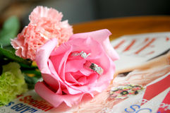 Anillos de bodas de novia y del novio imagen de archivo libre de regalías