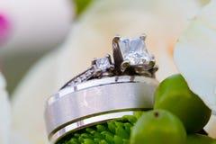 Anillos de bodas de novia y del novio Imagen de archivo