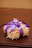 Anillos de bodas de un par nuevo-casado en un amortiguador para los anillos Imagen de archivo libre de regalías