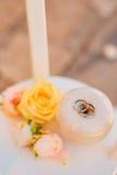 Anillos de bodas de un par nuevo-casado en un amortiguador para los anillos Imagen de archivo