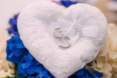 Anillos de bodas de un par nuevo-casado en un amortiguador para los anillos Fotos de archivo
