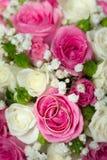 Anillos de bodas del oro en la flor. Imagen de archivo