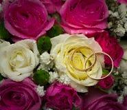 Anillos de bodas del oro en la flor. Fotos de archivo