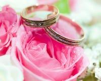 Anillos de bodas del oro en la flor. Foto de archivo libre de regalías
