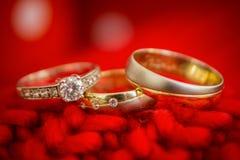Anillos de bodas, anillos de bodas el día de boda Foto de archivo libre de regalías