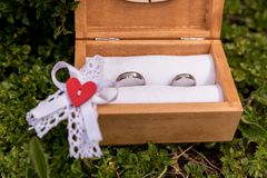 Anillos de bodas, anillos de bodas el día de boda Imágenes de archivo libres de regalías