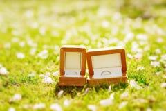 Anillos de bodas en caja Foto de archivo
