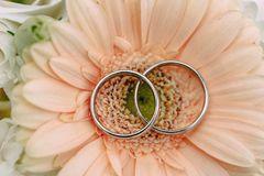 Anillos de bodas en la flor rosada fotografía de archivo