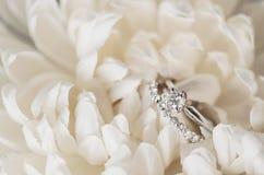 Anillos de bodas en las flores blancas Imagen de archivo