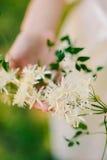 Anillos de bodas en las flores del jazmín en las manos del brid Imagenes de archivo