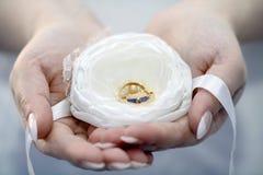 Anillos de bodas en las palmas Fotografía de archivo libre de regalías