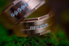 Anillos de bodas en macro del musgo Foto de archivo libre de regalías