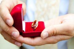 Anillos de bodas en manos Foto de archivo