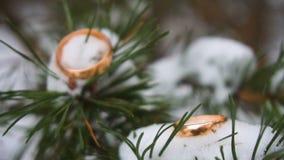 Anillos de bodas en rama verde en la nieve, foco selectivo Cierre para arriba Cámara lenta almacen de video