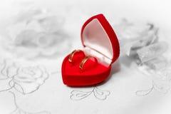 Anillos de bodas en rectángulo rojo foto de archivo