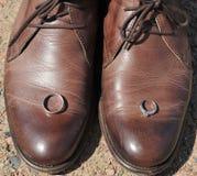 Anillos de bodas en un par de zapatos de cuero de Brown. Fotografía de archivo