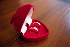 Anillos de bodas en un rectángulo foto de archivo libre de regalías