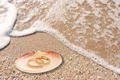 Anillos de bodas en un shell Fotos de archivo libres de regalías