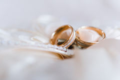 Anillos de bodas en una almohada decorativa con la perla y la cinta Foto de archivo libre de regalías