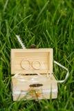 Anillos de bodas en una caja de madera abierta con las cintas blancas en GR Foto de archivo