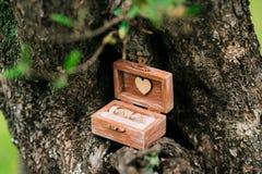 Anillos de bodas en una caja de madera para los anillos hechos a mano Imágenes de archivo libres de regalías