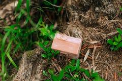 Anillos de bodas en una caja de madera para los anillos hechos a mano Imagenes de archivo