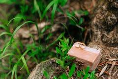 Anillos de bodas en una caja de madera para los anillos hechos a mano Fotografía de archivo