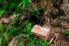 Anillos de bodas en una caja de madera para los anillos hechos a mano Fotos de archivo