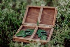 Anillos de bodas en una caja de madera en hierba Fotografía de archivo
