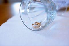 Anillos de bodas hermosos para la novia y el novio Imágenes de archivo libres de regalías